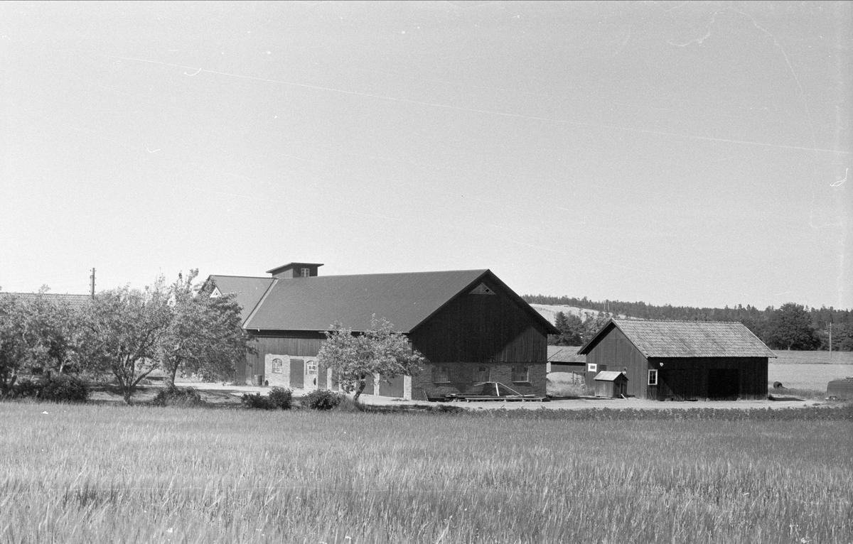 Vy över Högsta 4:2, Bälinge socken, Uppland 1976