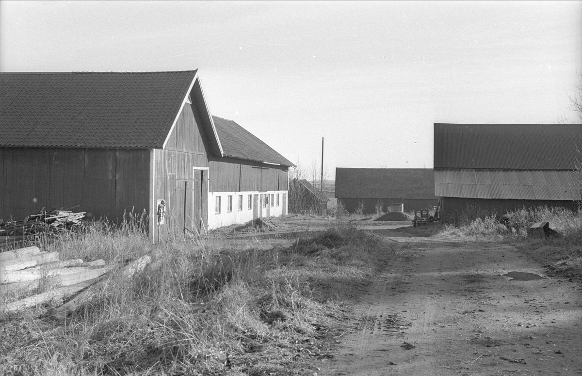 Lada, ladugård och lider/magasin, Ensta, Fullerö, Gamla Uppsala socken, Uppland 1978