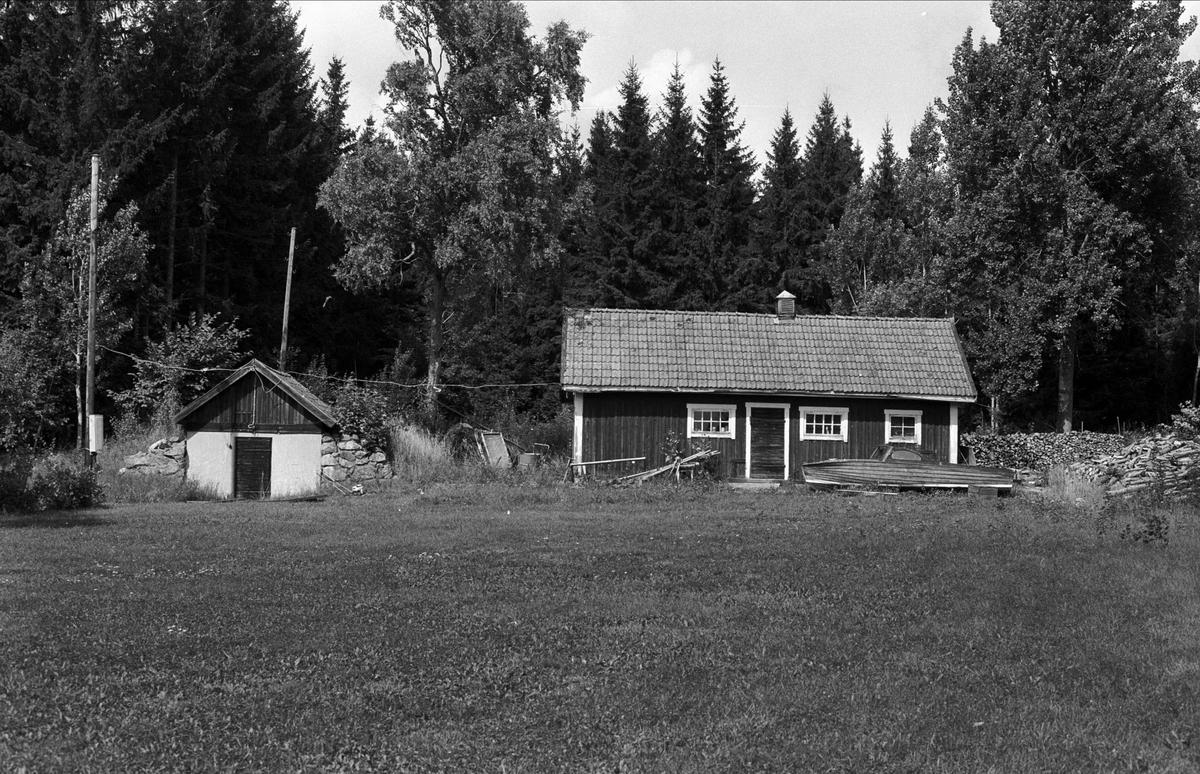 Uthus och källare, Stubbhagen, Rasbo socken, Uppland 1982