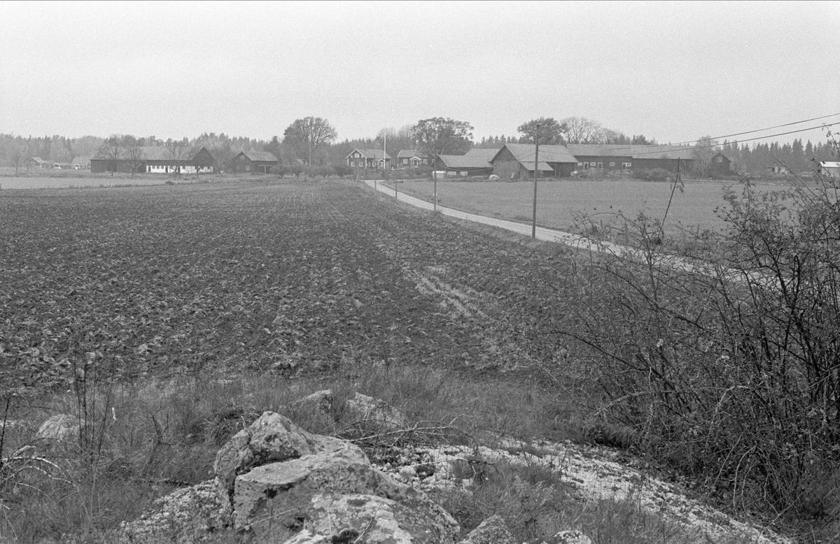 Vy över Hässle från sydöst, Dalby socken, Uppland 1984