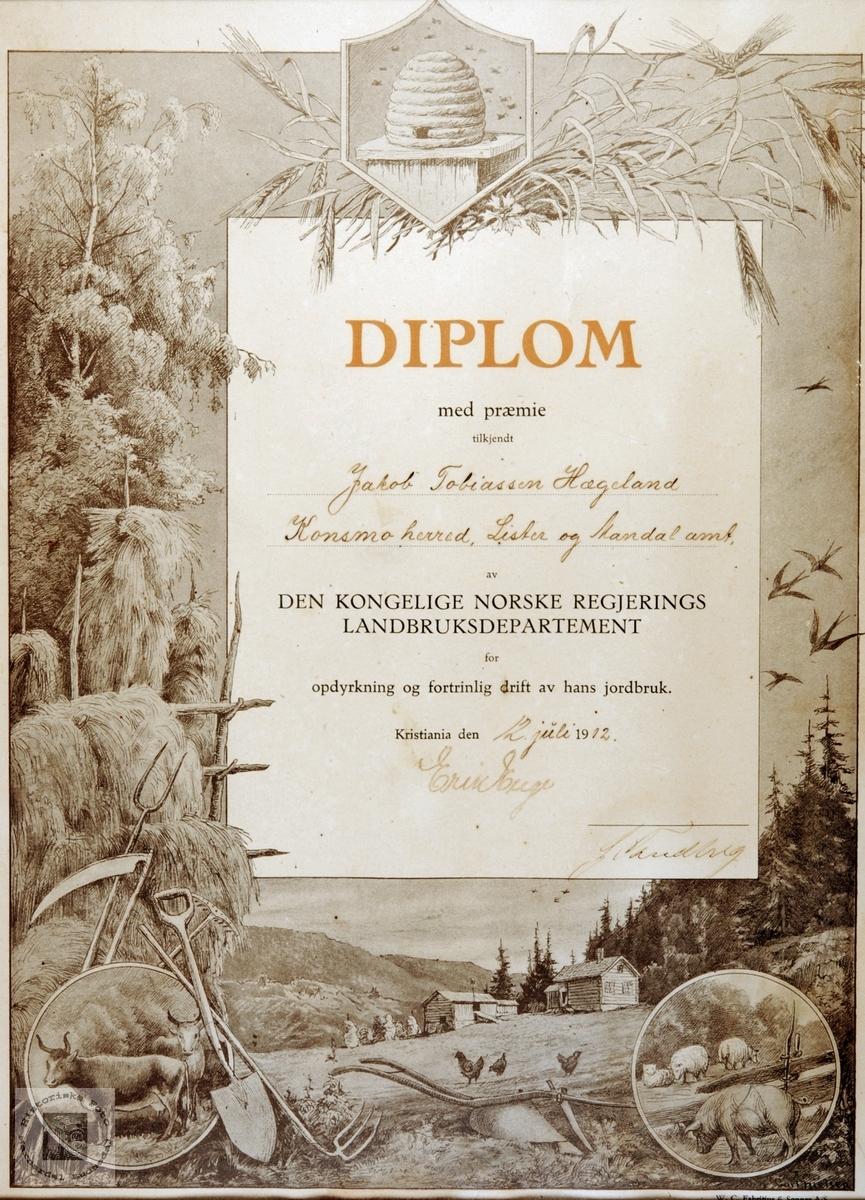 Diplom fra den Norske Regjerings Landbruksdepartement tildelt Jakob T. Hægeland fra Helle Konsmo. Audnedal.