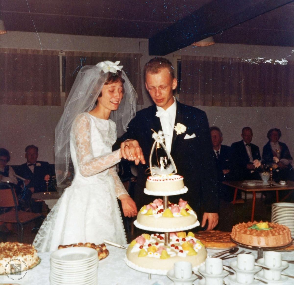 Brudeparet Synnøve og Tom Flottorp. Audnedal.