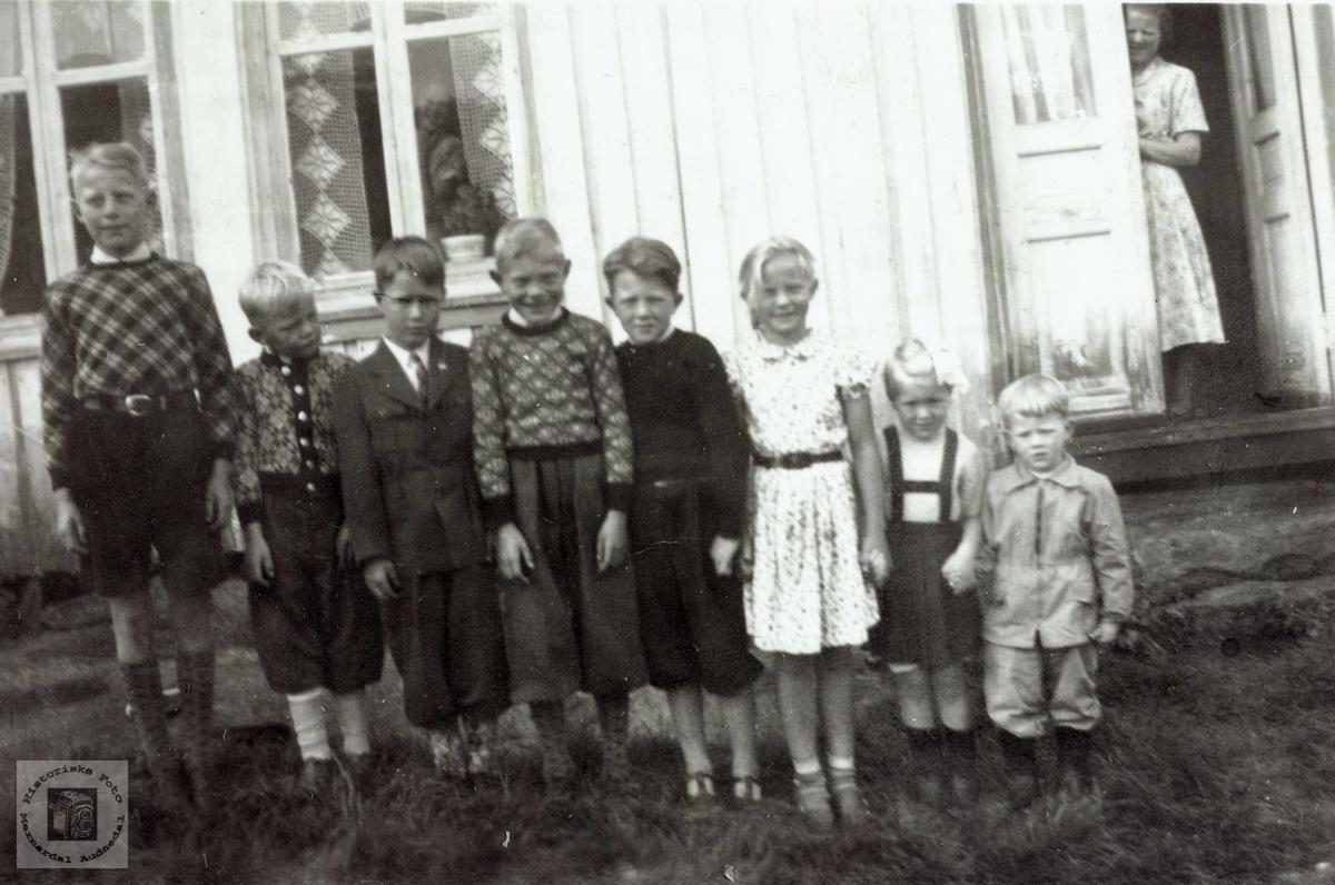 Barneflokk på Iveland Konsmo Audnedal.