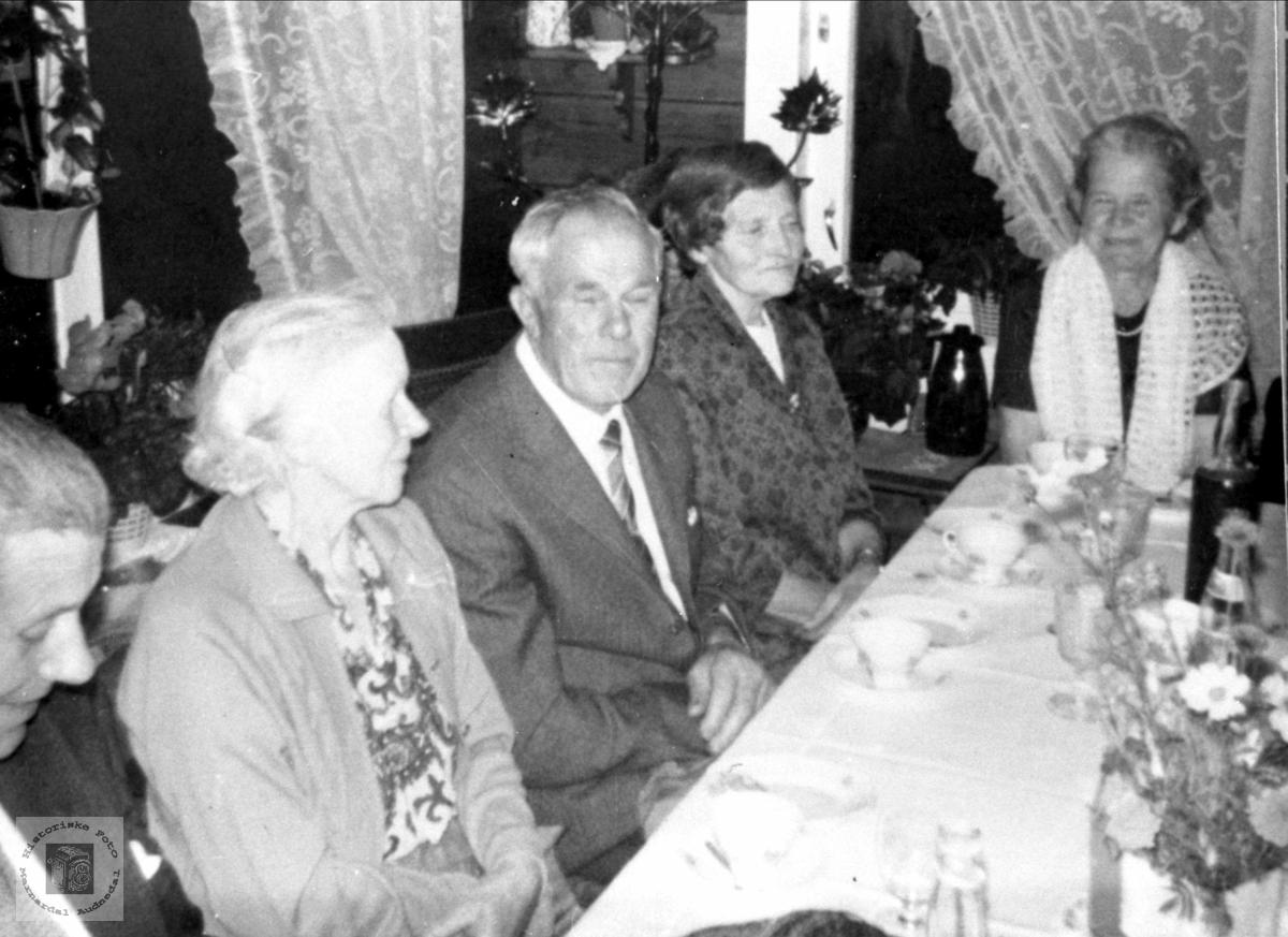 """Familieselskap """"Der nede"""" Haraldstad, Bjelland."""