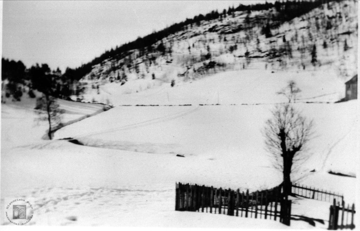 Røynesdal i vinterdrakt, Bjelland.