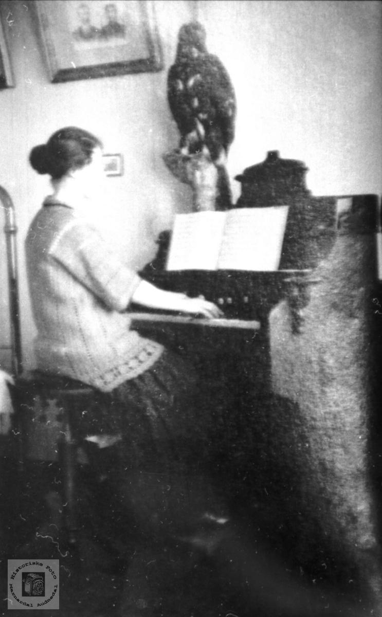 Portrett av Ingeborg Hagen ved orgelet i Hornes..