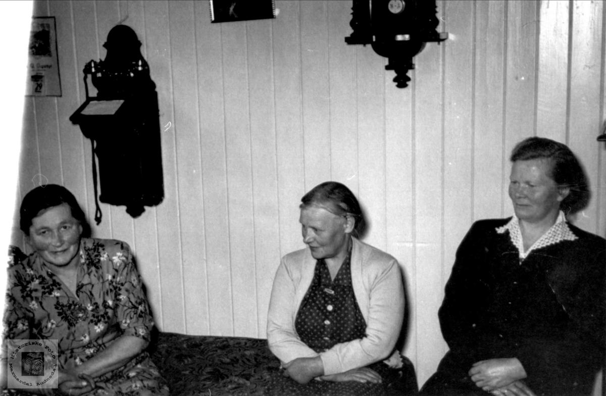 Gruppe Brunvatne og Ausland, Øyslebø.