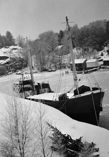 Fiskevik vid Stora Askerön med SILVA.
