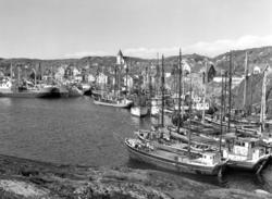 Hamnen i Skärhamn.