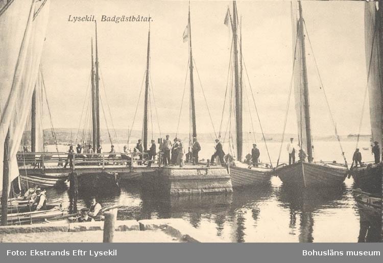 """Tryckt text på kortet: """"Lysekil. Badgästbåtar."""" """"Albert Wallins Bokhandel."""""""