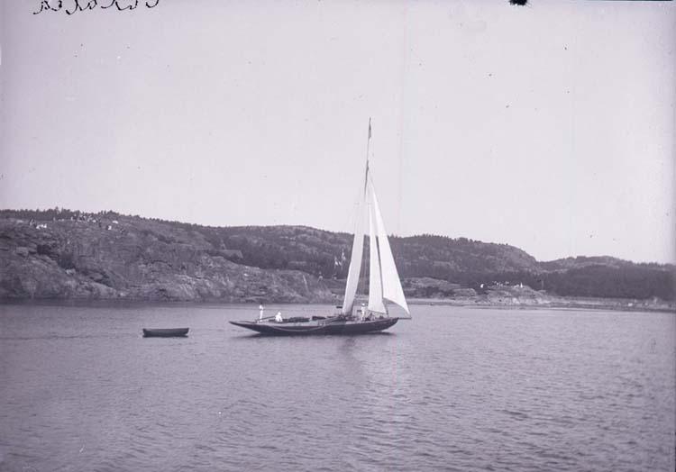 """Enligt text som medföljde bilden: """"Gustafsberg, Galatea. Aug. 11."""" ::"""