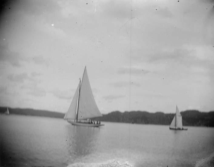 """Enligt text som medföljde bilden: """"Gustafsberg. Kappseglingen 1897."""" ::"""