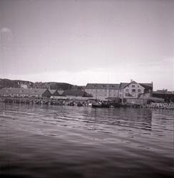 Kullans konservfabrik 1946.