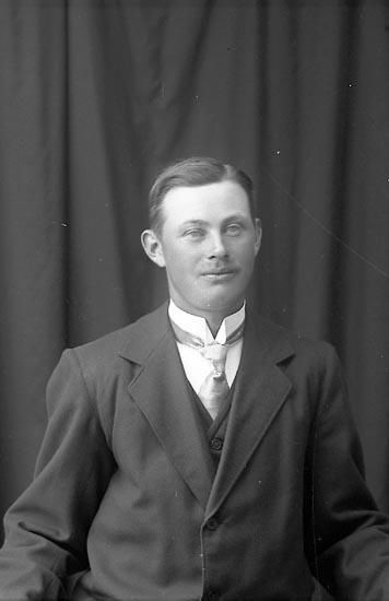 """Enligt fotografens journal Lyckorna 1909-1918: """"Johansson, Artur Ljung Lyckorna""""."""