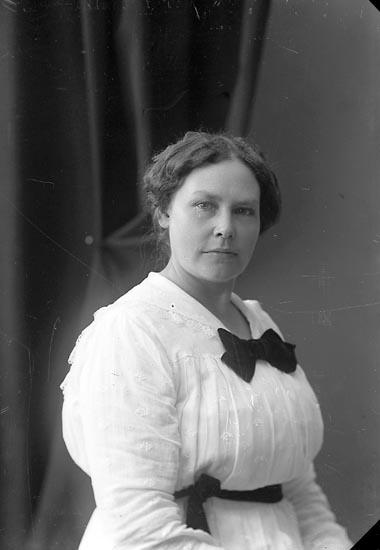 """Enligt fotografens journal nr 4 1918-1922: """"Lundstedt, Fr. Aug. Här""""."""