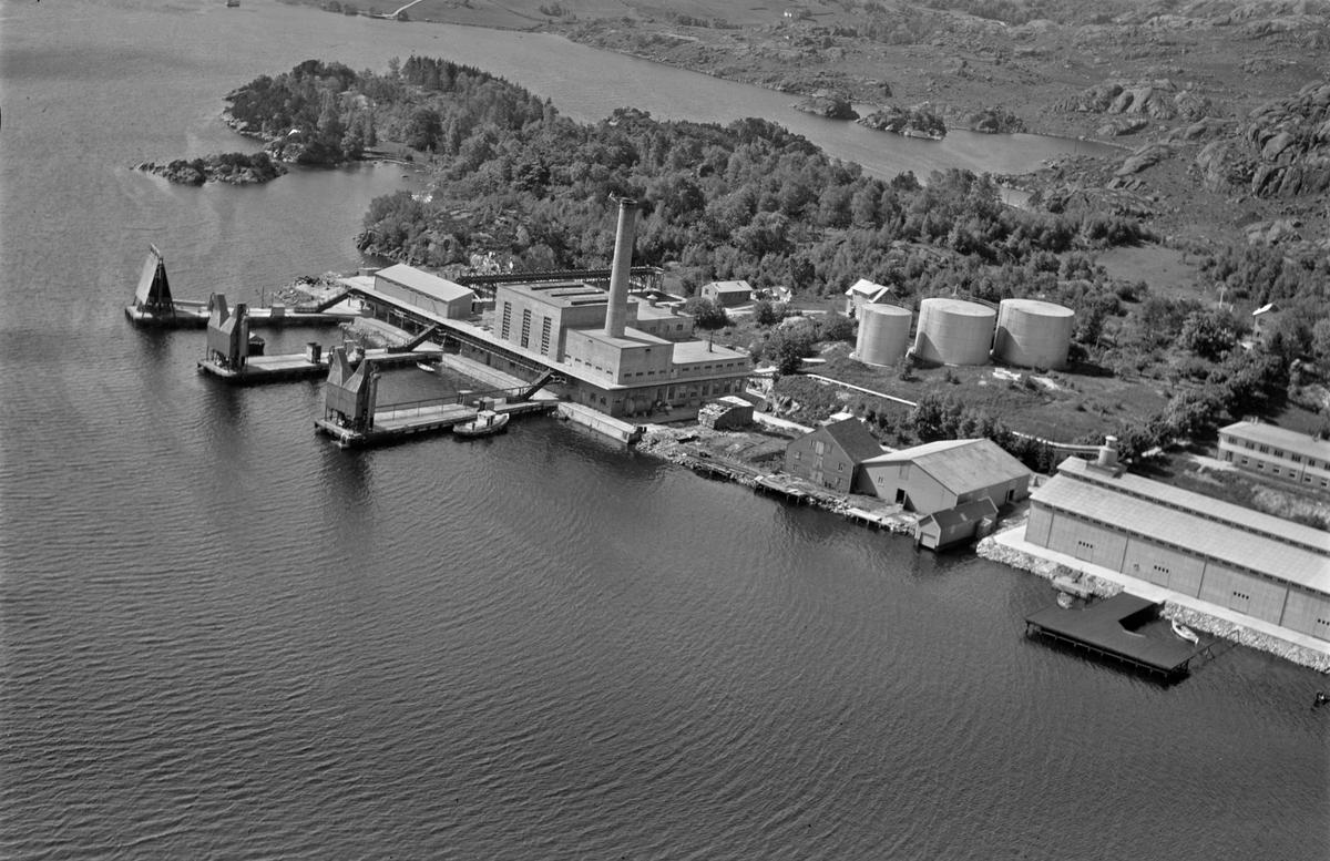 Grønehaugen, Sildefiskernes fabrikklag