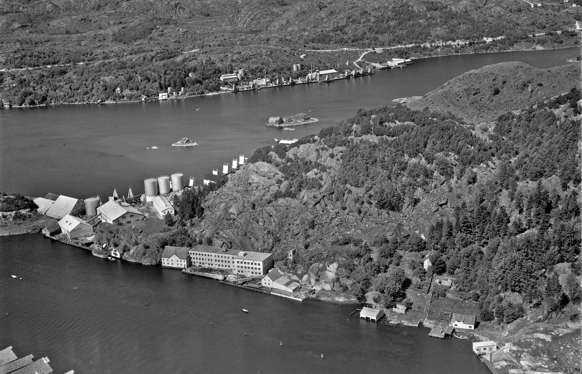 Sildoljefabrikk, Eie Stentøyfabrikk, Rauhedlå
