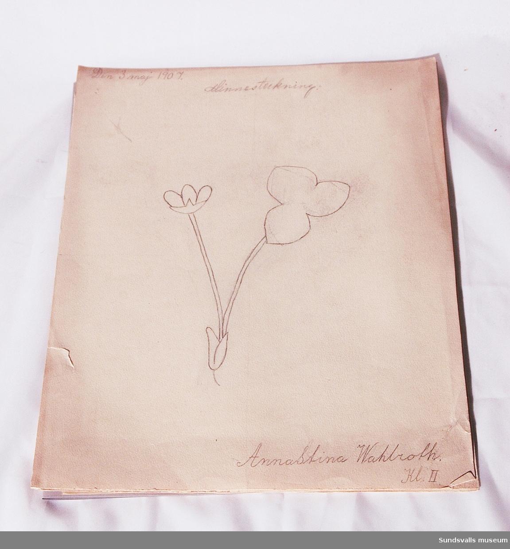 Skolteckningar Anna - Stina Wahlrot, klass II 1907 bunt 15 blad