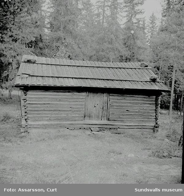 Medelpads Fornminnesförening. Fornhemmet: 1500-tals lada från Haverö.