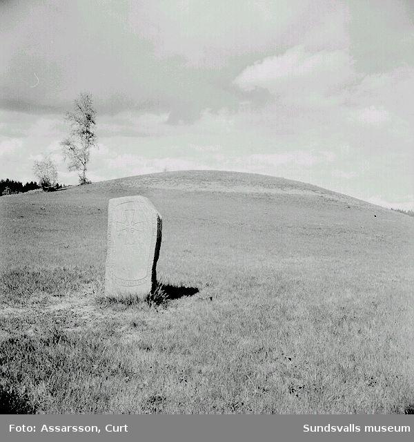 Runsten och del av gravfältet i Högom.
