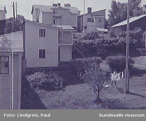 Snickaregatan 23. Trädgården med gårdshus. Numera rivet.