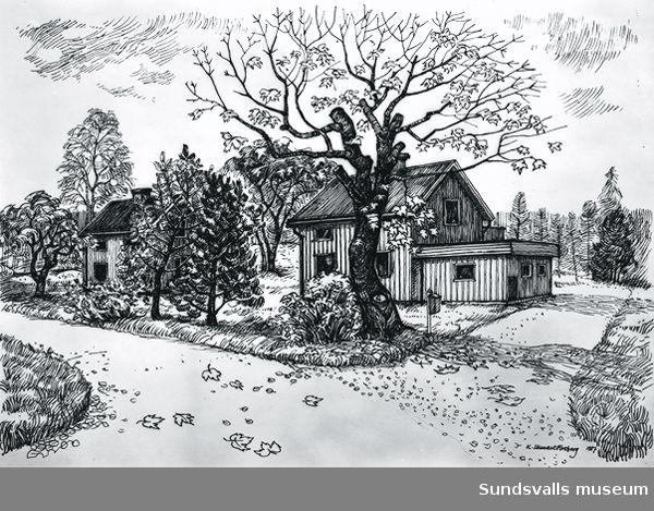 Teckning av Lennart Forsberg, Matfors.