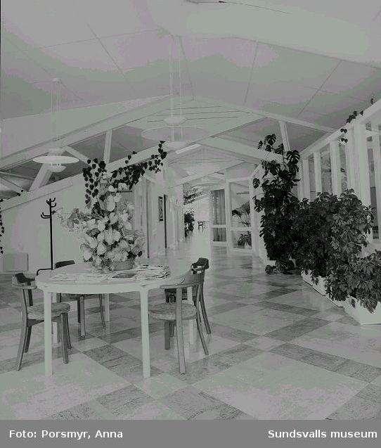 Företagshotell i f.d. spannmålsmagasin och lagerbyggnader på Mokajen, Skönsmon 2:4, 2:97, 2:5, Kolvägen 15 - 21. Magasinen började byggas om 1986 för Norrlandspojkarna AB, arkitekt var Tommy Nilsson.