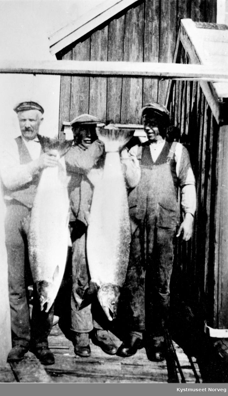Foran fra venstre: Harald P. Valø, Asbjørn Valø og Gerhard Valø med fiskefangsten på Valøya
