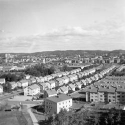 Bleket, Uddevalla 1960