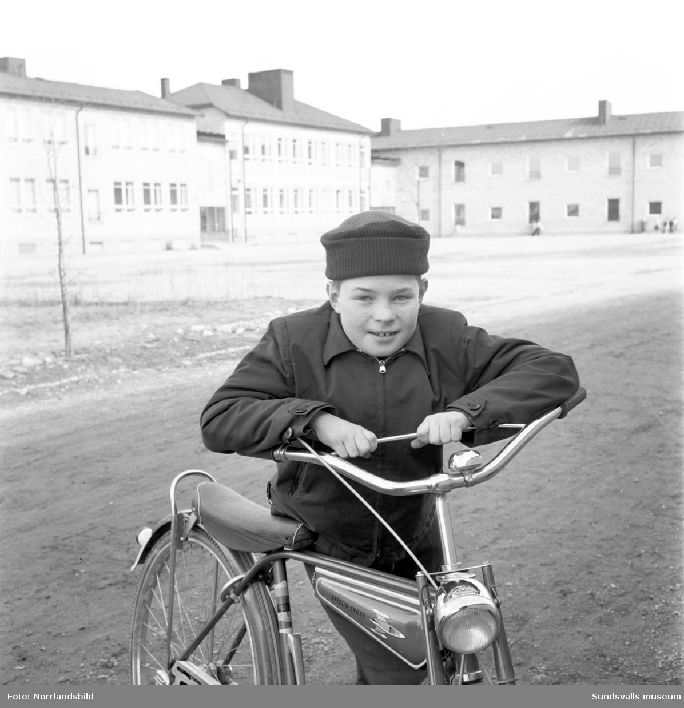 Skolfrågetävling, 11-årige Anders Hammarberg på S:t Olofsskolan.