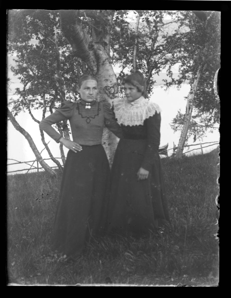 To kvinner fotografert ute i sommerhalvåret ved siden av ei stor bjørk