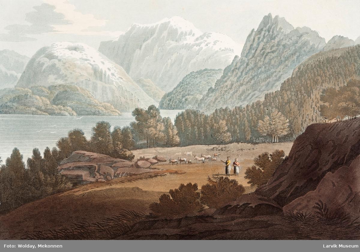 Lenongen (Søen Lenongen)