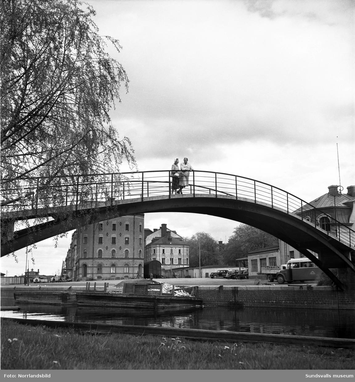 Ett ungt par på vårpromenad invid Selångersån och Puckelbron.