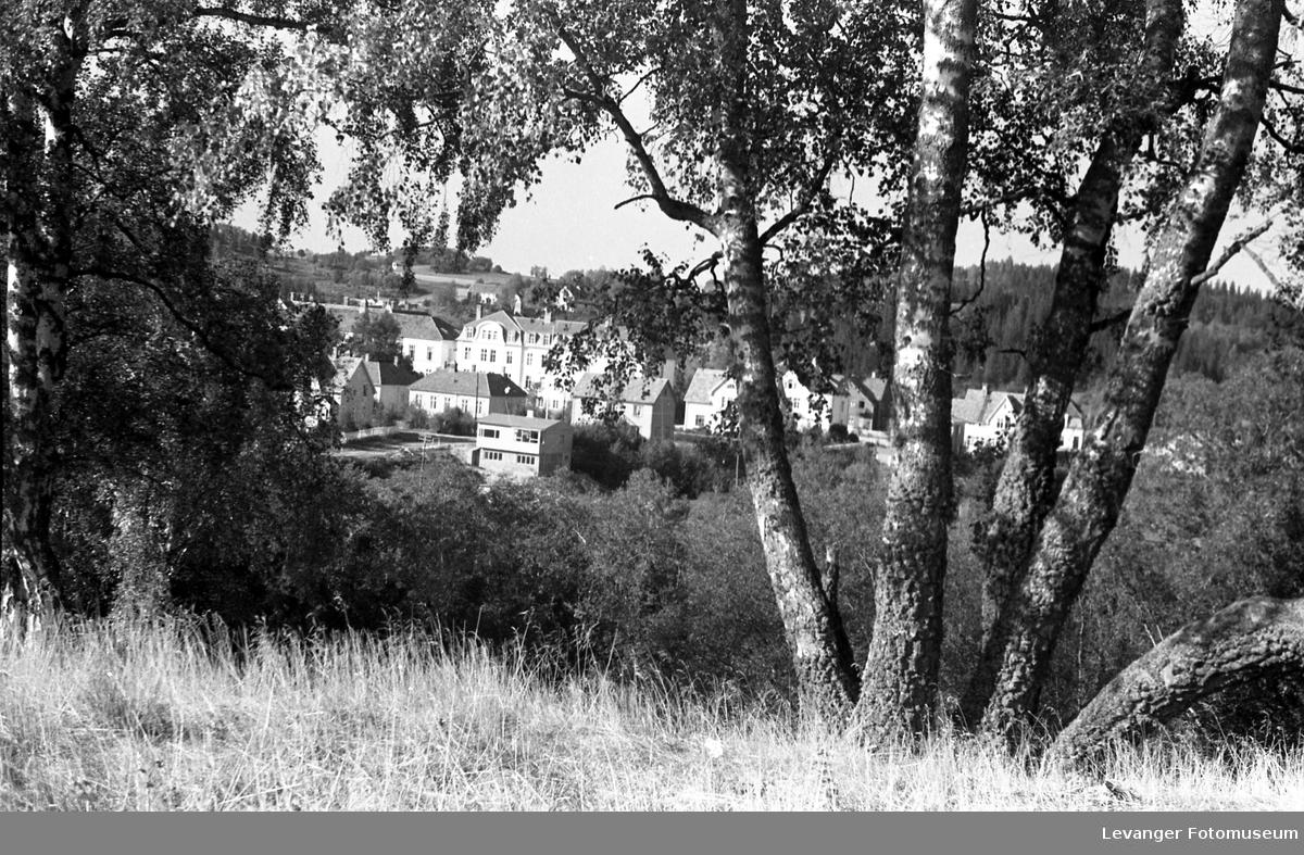 Motiver fra Trehusbyen og Bruborgsida. Fra Litjmarkbakkan med byen i bakgrunnen.