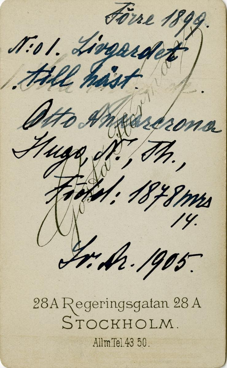 Porträtt av Hugo Nicolaus Otto Theodor Ankarcrona, officer vid Livgardet till häst K 1.