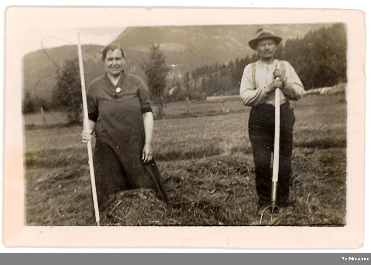 Kvinne og mann i slåtten