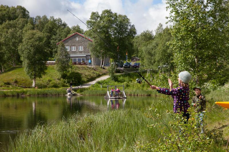 Doktortjønna fiske (Foto/Photo)