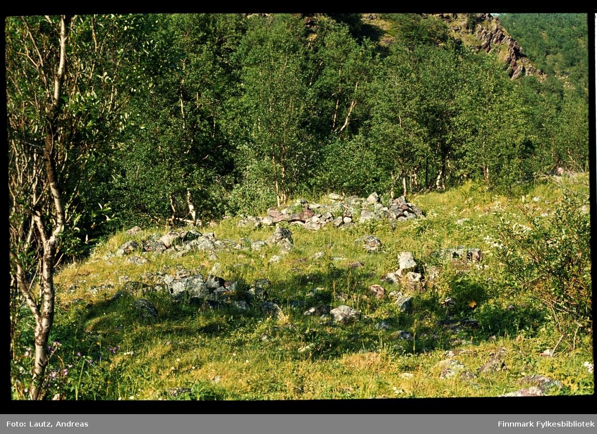 Tana i 1975. Steinring i Fingervanndalen. Samisk offerplass?