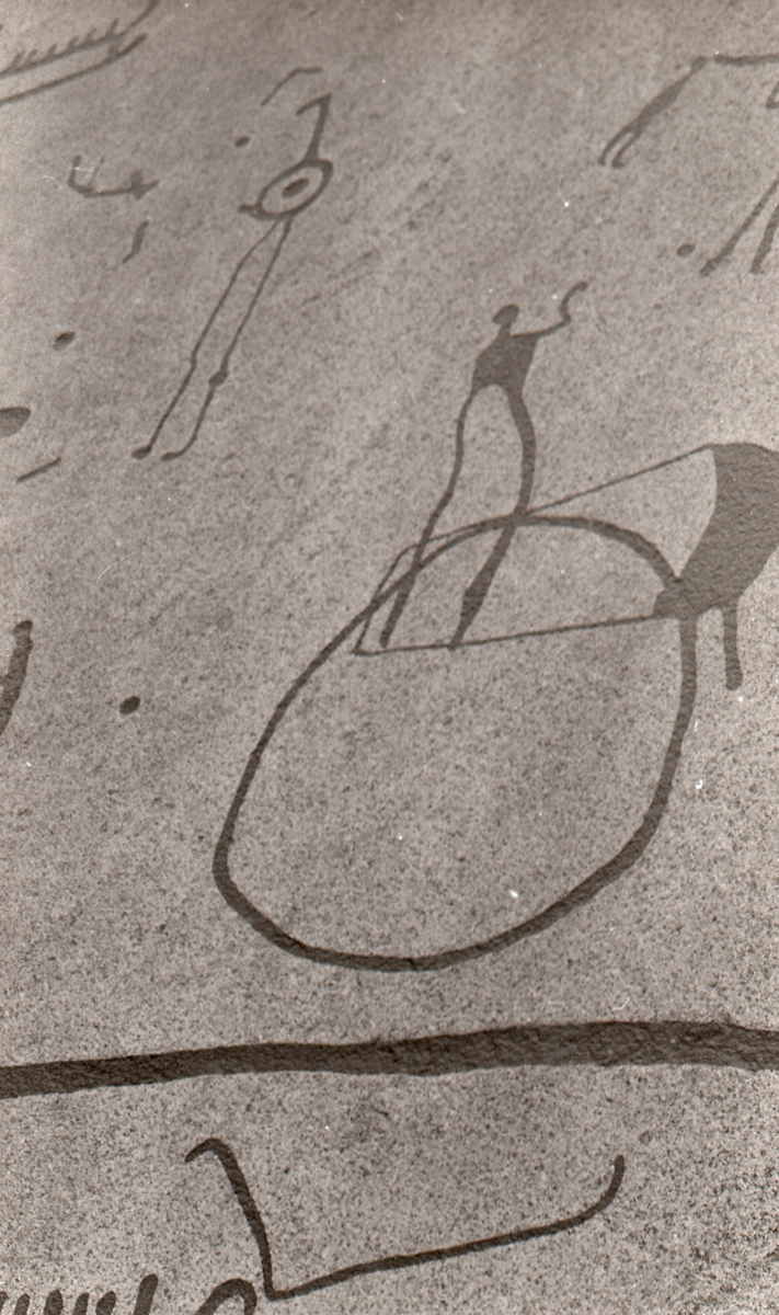 """Hällristningsområdet i Tanum är ett område i Tanums kommun i Bohuslän där man funnit flera berghällar med stora mängder hällristningar från bronsåldern. Runt den största av dem, Vitlyckehällen, är Vitlycke museum uppbyggt. Hällen har närmare 300 inhuggna figurer och ca 170 skålgropar. Den kanske mest berömda scenen bland alla Tanums hällristningar, """"Brudparet"""", finns här. Bland de övriga närliggande hällarna märks Litsleby med en ca 2,3 meter lång spjutbeväpnad man, """"Spjutguden"""", och Aspeberget med en plöjningsscen, ett antal oxar och skepp. Hällen vid Fossum ligger en bit från de övriga. Den kännetecknas av en mer sammanhållen och konstnärlig komposition. Kanske är den gjord av en enda ristare.  Hällristningarna har i modern tid fyllts i med röd färg för att göra dem tydligare. Det är inte känt om de var målade från början.  (Hämtat från Wikipedia)"""