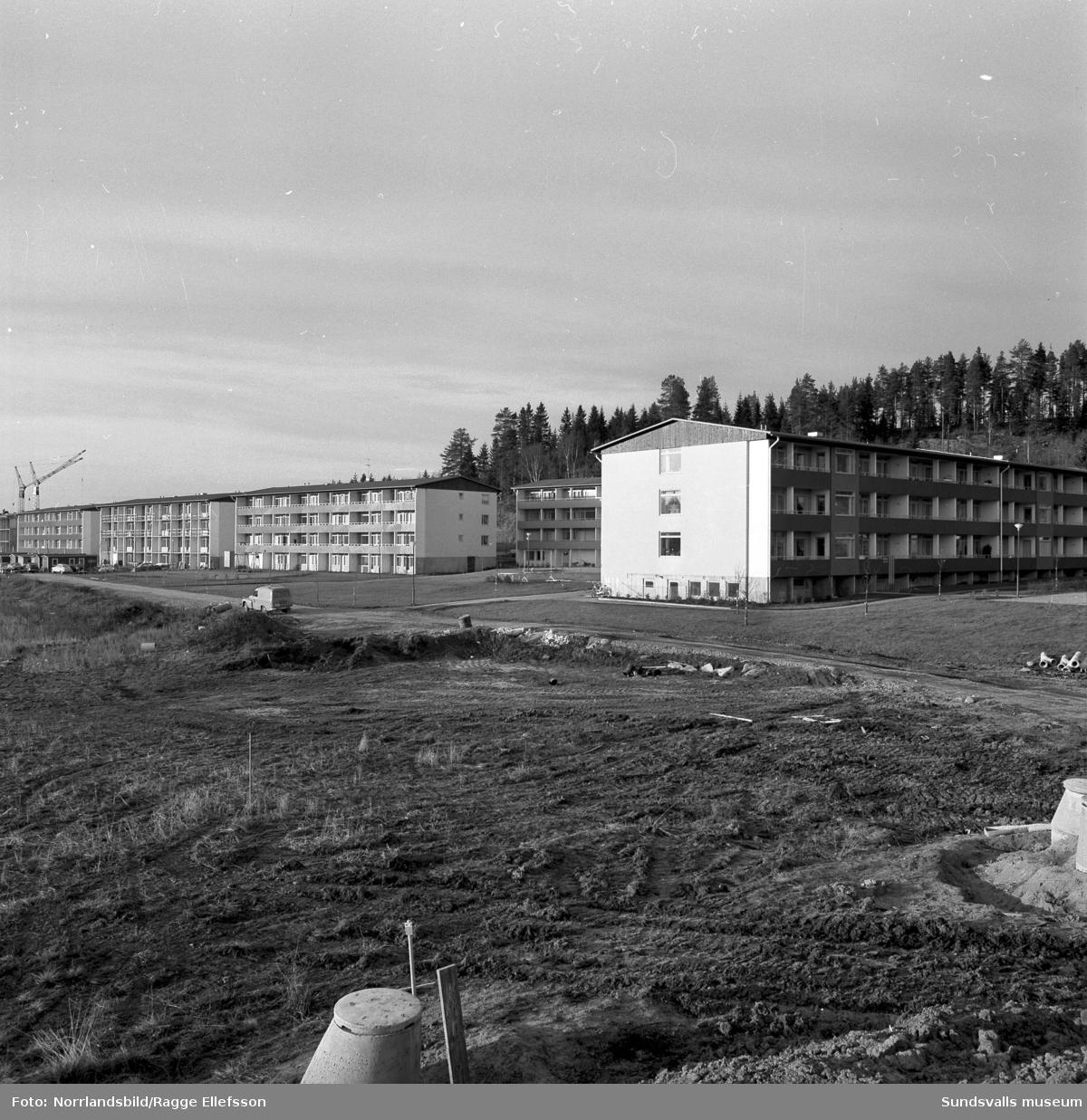 Nya bostäder i Granlo, färdiga och pågående byggen vid Vikingavägen 63-71.