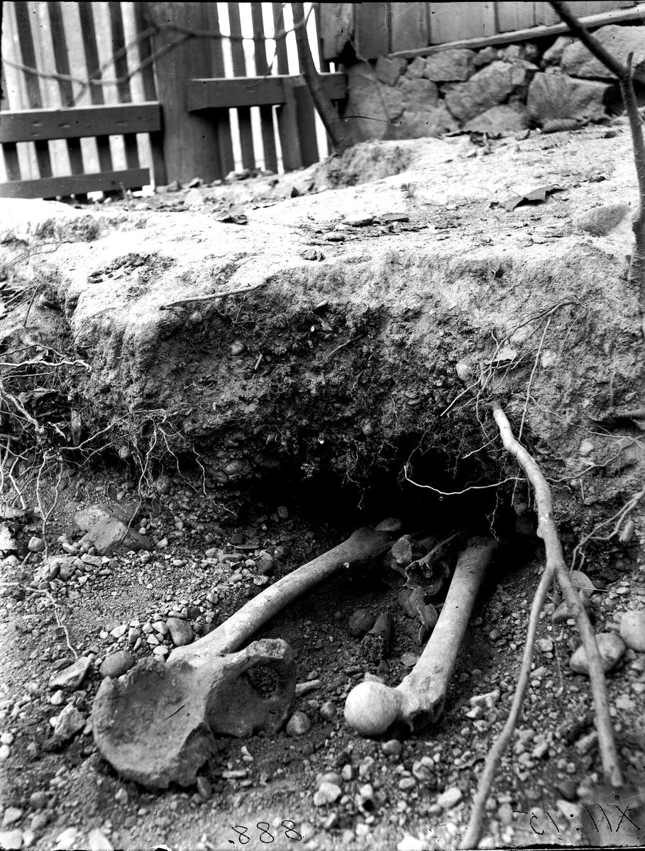 Medeltida gravar. Foto år 1922. Fotograf Sörman.