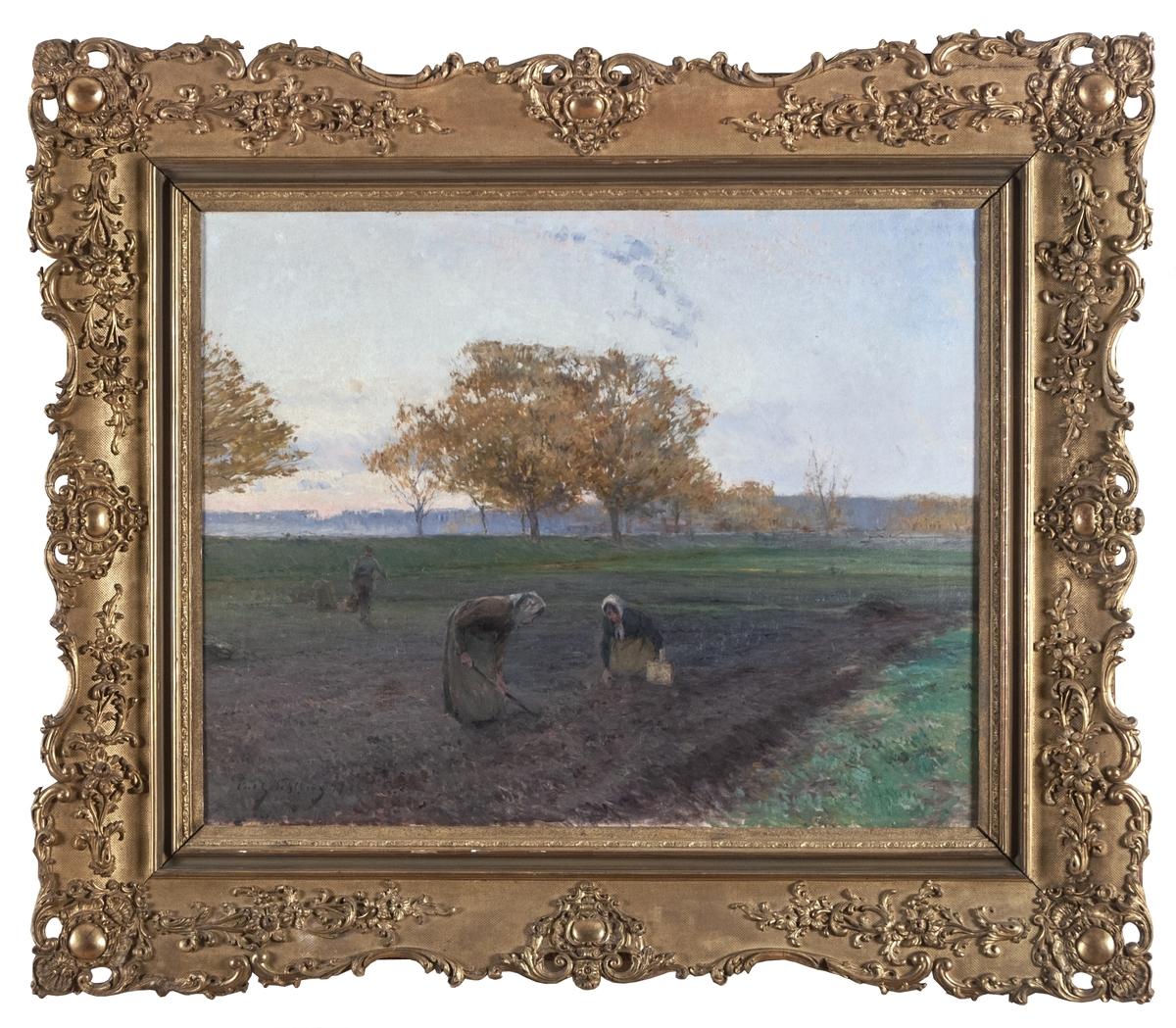 """Tavla med ram. Oljemålning på duk. Motiv: landskap med två lantligt klädda kvinnor på brun åker. Den ene plockar rotfrukter i korg, den andre gräver med redskap. I bakgrunden avlägsnar sig en man in i bilden mot gröna ängar och höstgula träd. Övre halvan av bilden utgörs av disig, blåvit himmel.  Kompositionen triangulär. Signerad nere till vänster: """"Carl G Sehlberg 94"""". Bronserad originalram av trä, profilerad med riklig ornamentik av akantusblad runt ramen."""