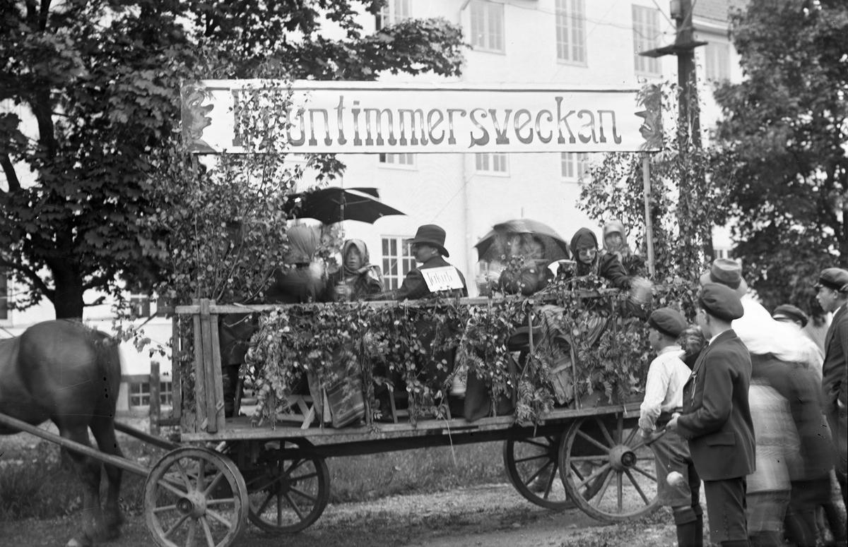 """Barnens Dag i Storvik. """"Fruntimmersveckan""""."""