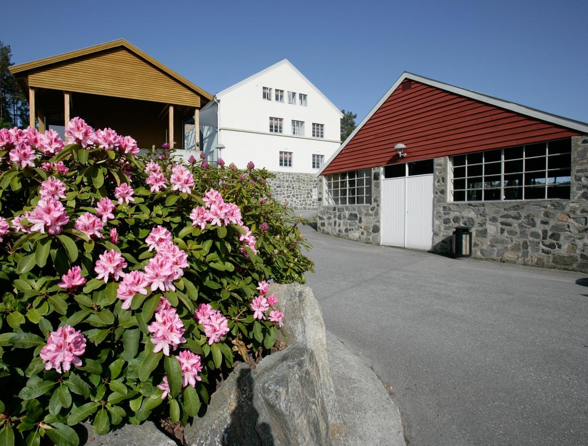 Stiftinga Sunnmøre Museum