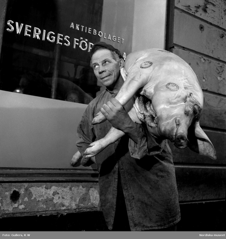 Man bärandes på en griskropp vid kötthallen på Munkbrogatan, Stockholm.