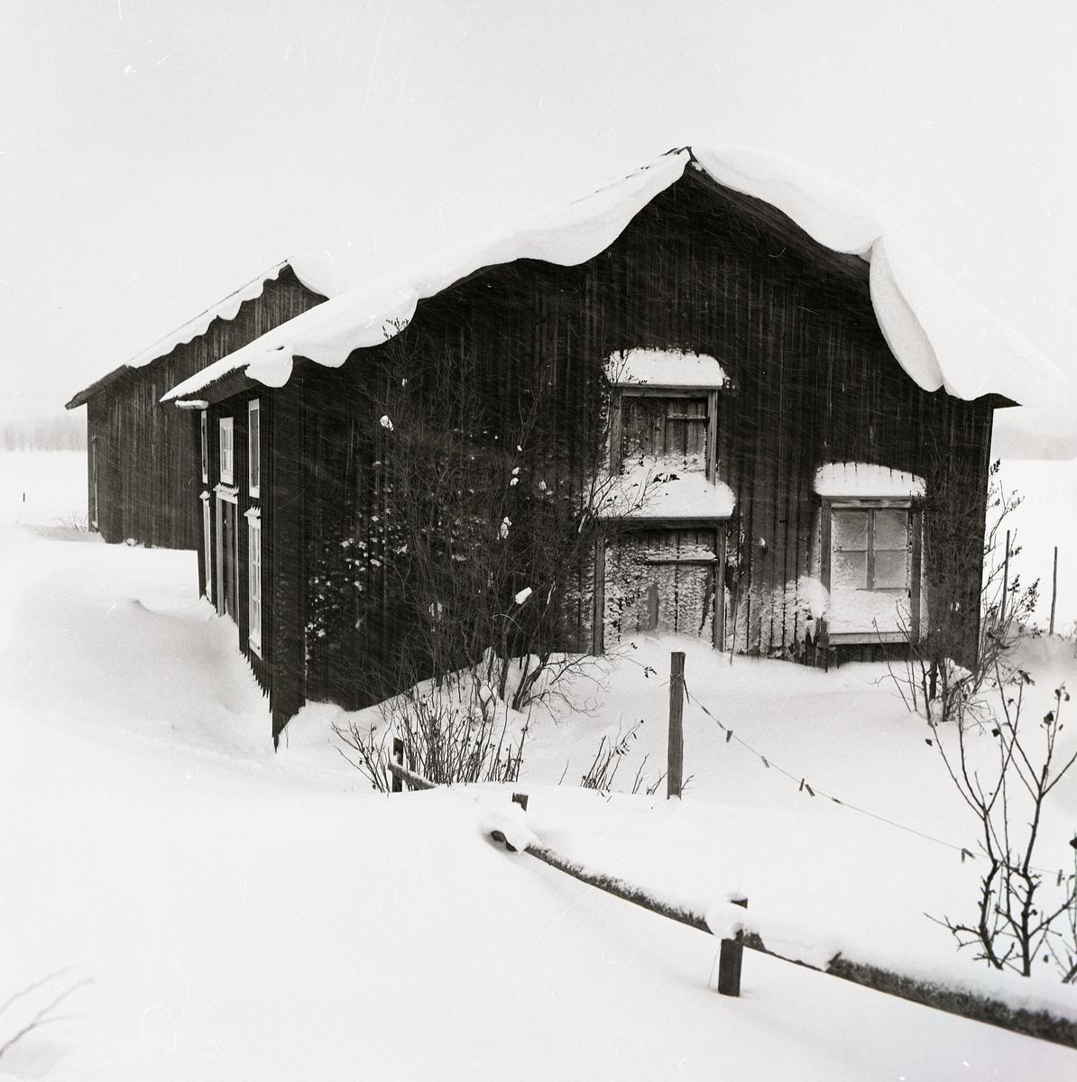 Som ett art nouveau mönster ligger snön i kurviga naturformer på husets tak. Snön yr i luften runt huset och täcker fönstrena. Både buskaget och staketet står i djup snö framför byggnaden. Ett tjockt lager pudersnö täcker hela gården utan avtryck eller spår från någon levande varelse.