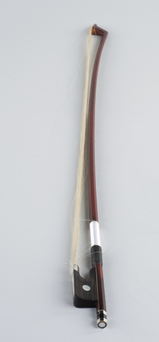 Cellobue av brasiliansk pernambucotre og hestehår.