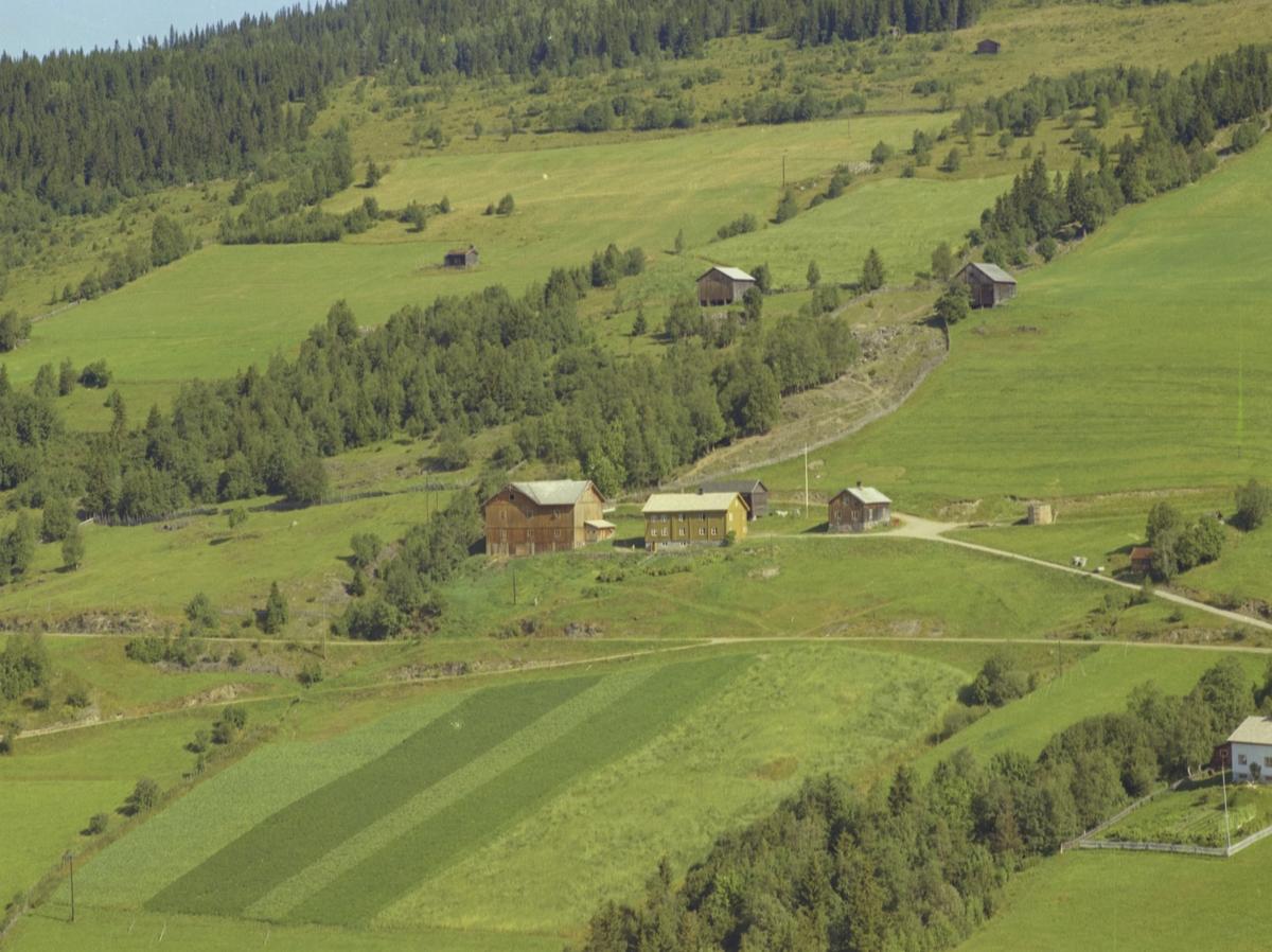 Brettingen, grønt våningshus, to utløer, Bødalen, Vestre Gausdal