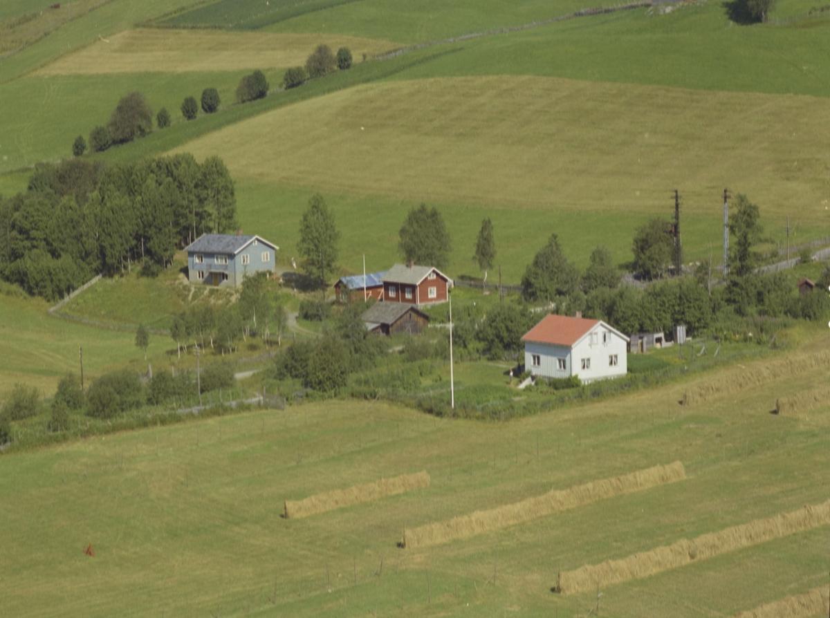 Tre bolighus, blått, rødt og hvitt, hesjer, Olstad Vestre Gausdal
