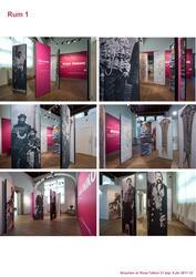 """Utställningsdokumentation """"Smycken av Rosa Taikon"""""""